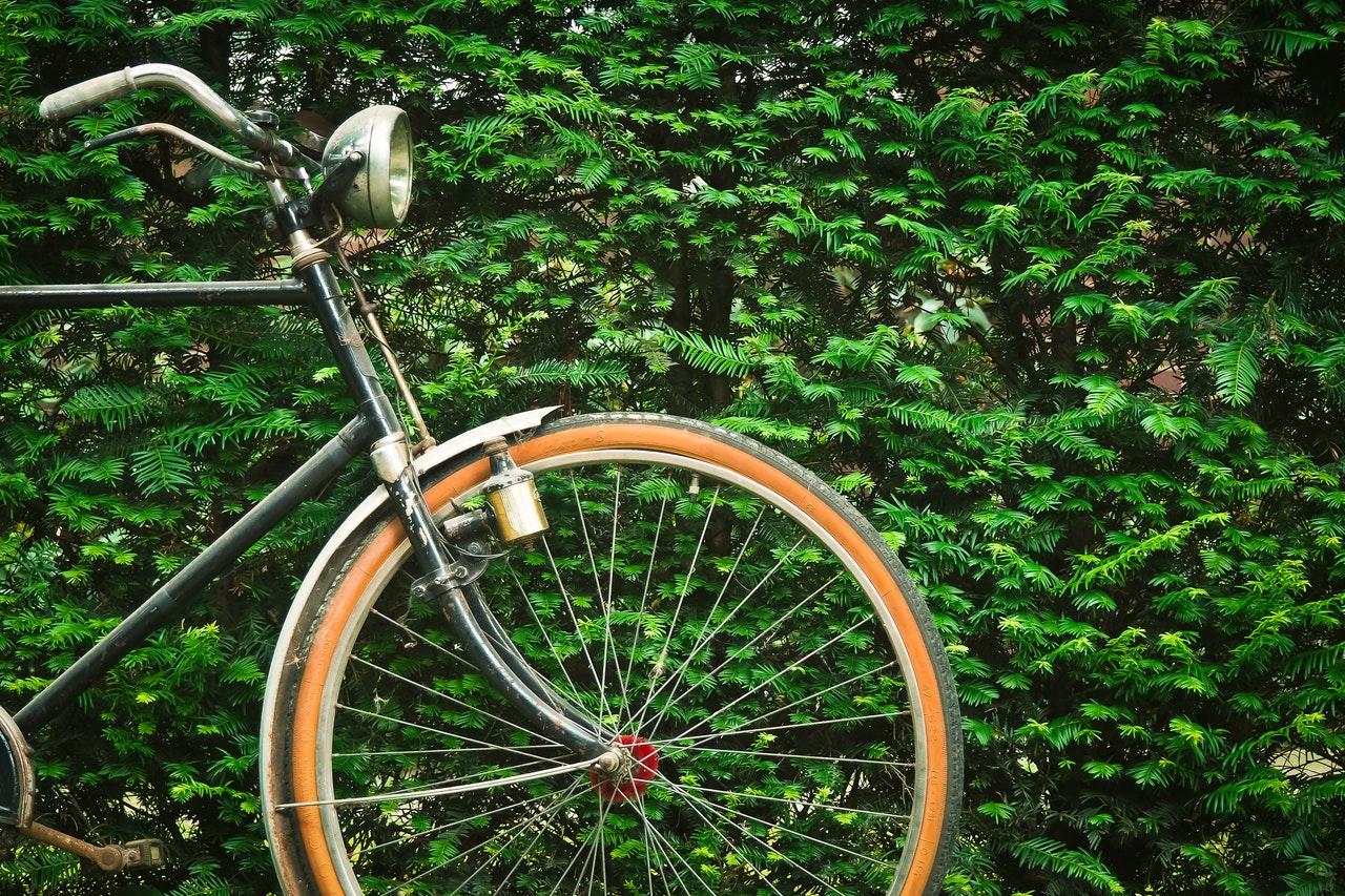 Die Pflege des Fahrrads